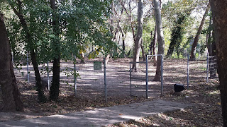 Yambol City Park, Dog Compound,
