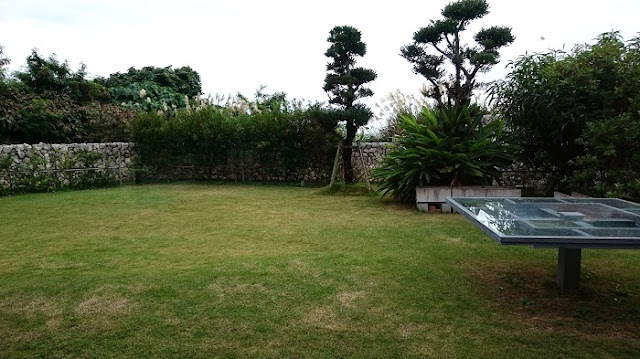 みやんちの庭の写真