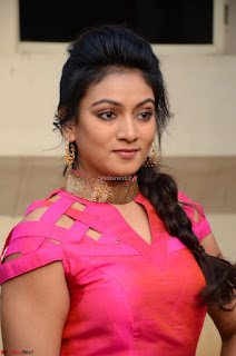 Ashmita in Pink Top At Om Namo Venkatesaya Press MeetAt Om Namo Venkatesaya Press Meet (23).JPG