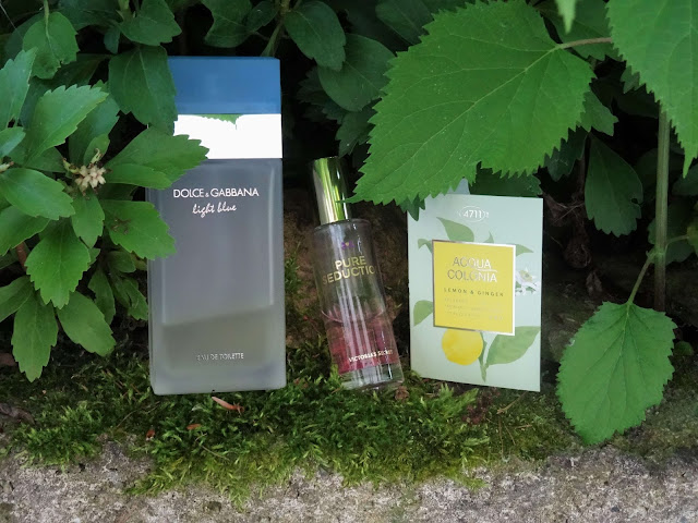 Dolce & Gabbana Light Blue - Victoria's Secret Pure Seduction - 4711 Acqua Colonia  Lemon & Ginger