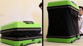 koper fugu