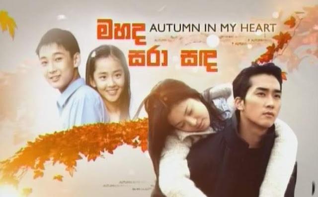 Tonton Drama Korea - Autumn In My Heart