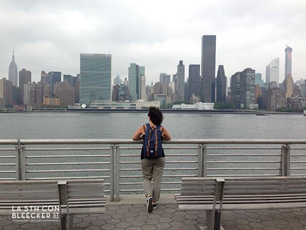 miradores de Nueva York granty plaza state park
