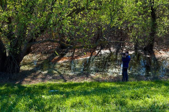Lunca Prutului Inferior se afla situata in estul judetului Galati, la granita cu Republica Moldova.
