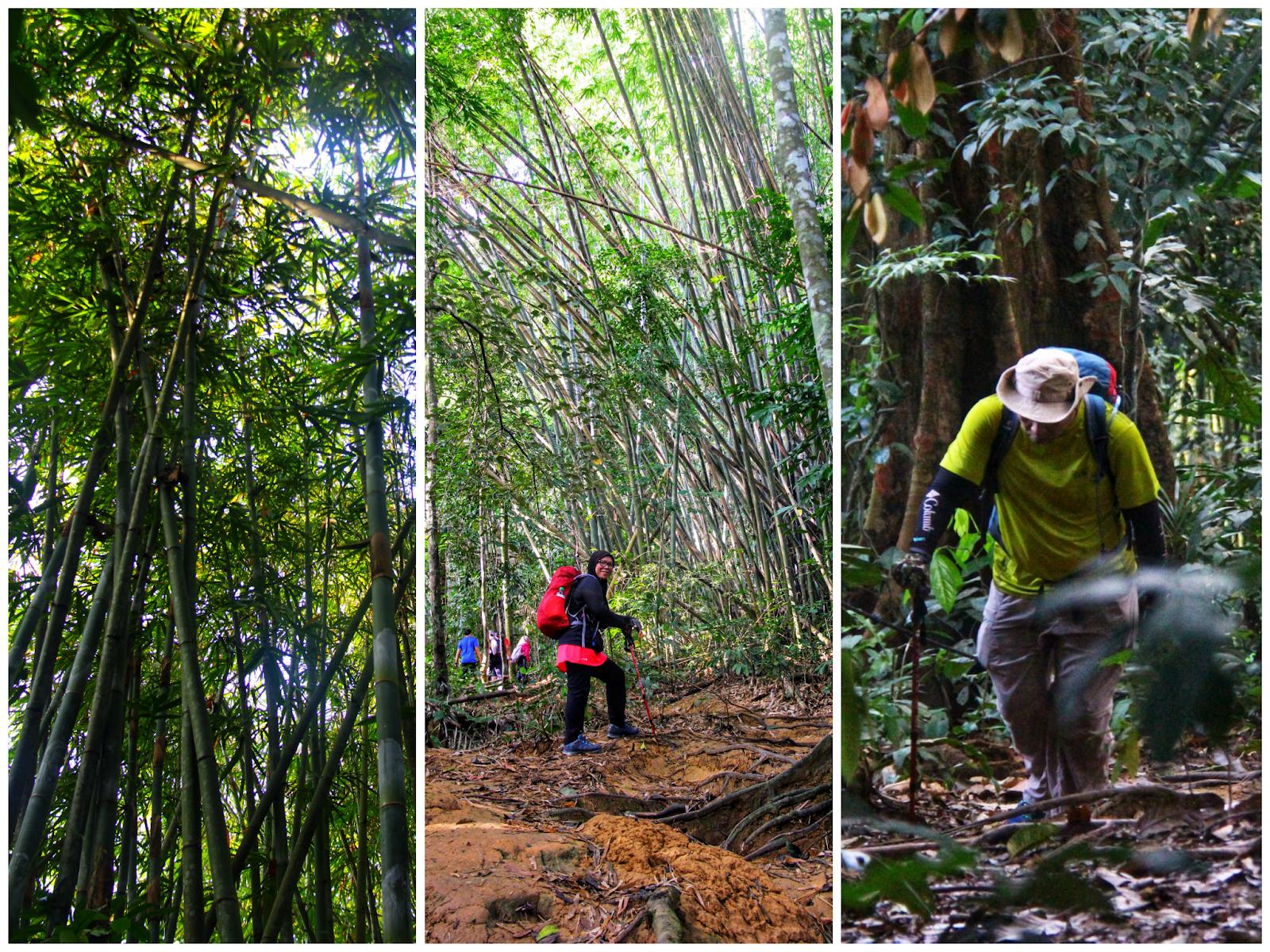 Trek ke Bukit Kutu, Kuala Kubu Bharu 3