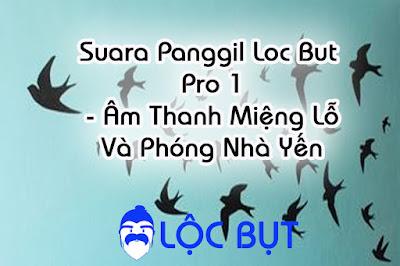 Âm hut chim suara panggil loc but pro 1