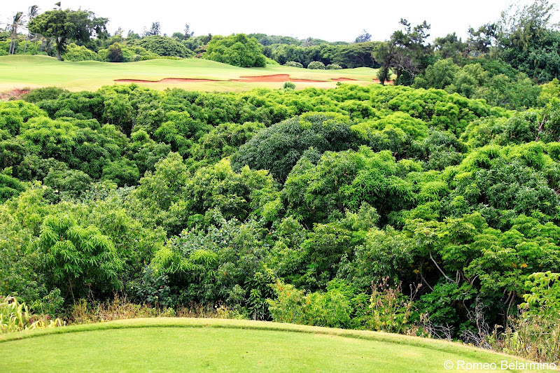 Kiele Mauka Hole 6 Kauai Lagoons Golf Club Hawaii