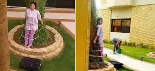 Αδιανόητη «τιμωρία» από Σαουδάραβες σε υπηρέτρια: Την έδεσαν σε δέντρο για ένα λάθος