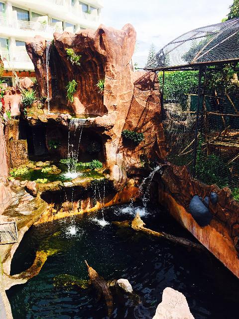 buaya di batu secret zoo