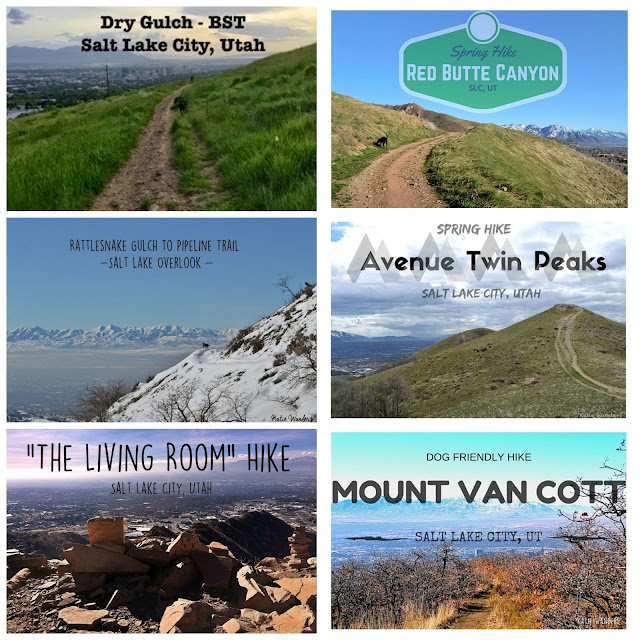 So I Found Some Great Hikes Did Them All And Put Together This List For You With A Few Extras Outside SLC If Are Willing To Travel