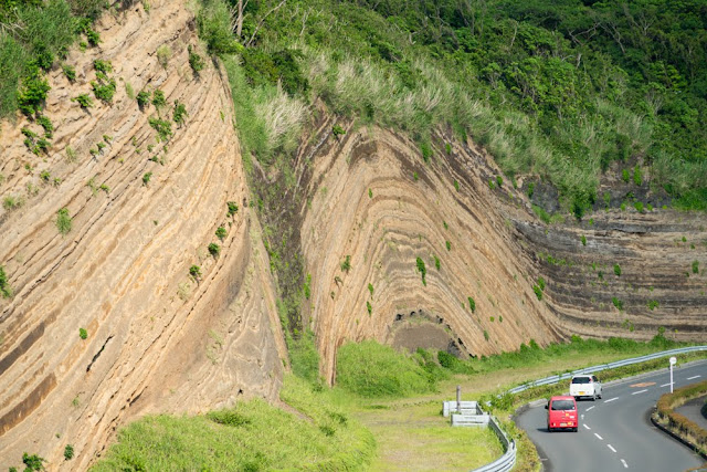 大島 地層大切断面 バウムクーヘン