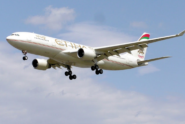 Gambar Pesawat Airbus A330 09