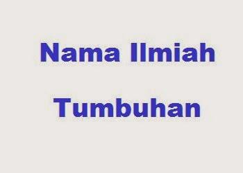 Daftar Nama Ilmiah/Latin Tumbuhan dari A-Z