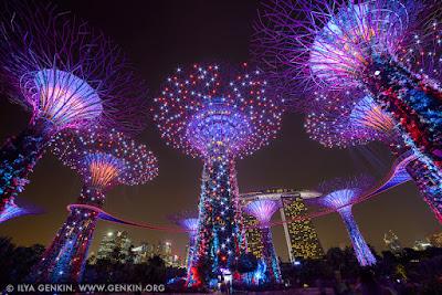 Cara Pintar Travelling Murah di Singapura