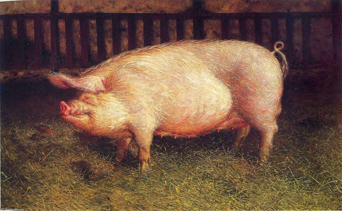 Portrait of Pig, Jamie Wyeth (1970)