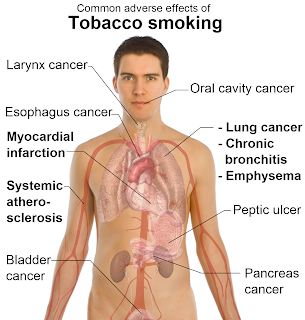 how to reduce the side effect of smoking
