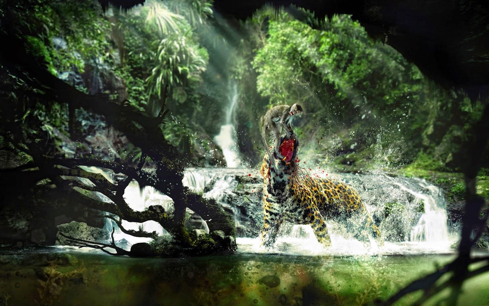 Terriod Animals Hd Wallpapers