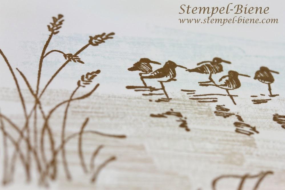 Stampin Up Wetlands, Farbkarton Flüsterweiß, Grußkarte basteln, Stampin' Up Stempelparty, Stempel-biene, Stampin' Write Marker