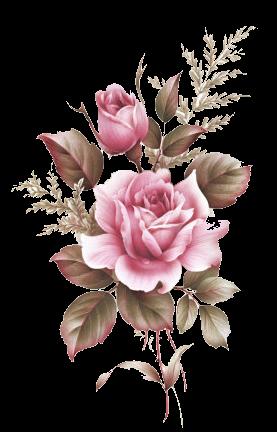 Flores Hibisco Rosa Cravo Etc Lacremania