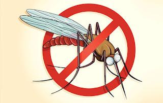 Gejala dan Cara Penularan Penyakit Malaria