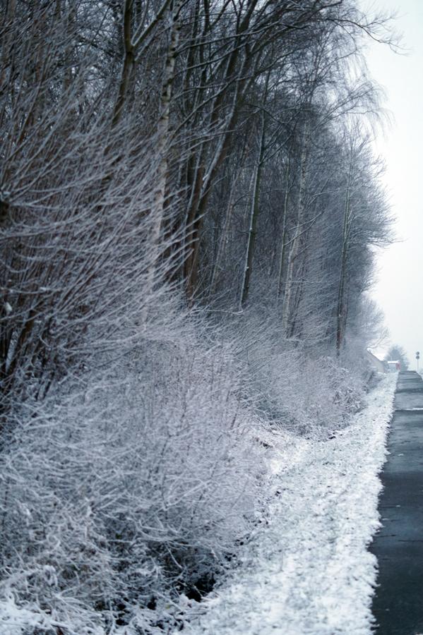 Blog + Fotografie by it's me! - Winter für einen Tag - verschneiter Fußweg an der Bundesstraße
