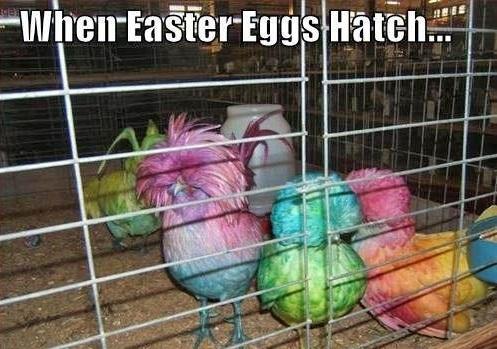Cool Easter Memes
