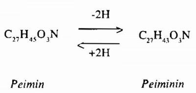 Thành phần hóa học Triết Bối Mẫu - Fritillaria-BulbUs Fritillariae - Nguyên liệu làm thuốc Chữa Ho Hen