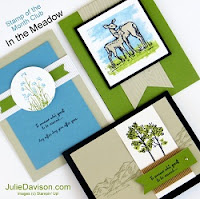 Stampin' Up! In the Meadow Card Kit for Julie Davison's Stamp of the Month Club #stampinup 2016 Occasions Catalog www.juliedavison.com
