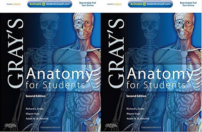Gray S Anatomy For Students Pdf Ebook Booksdoctor
