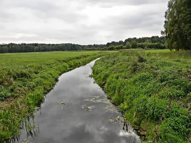 rezerwat przyrody, zieleń i woda, perełki przyrody