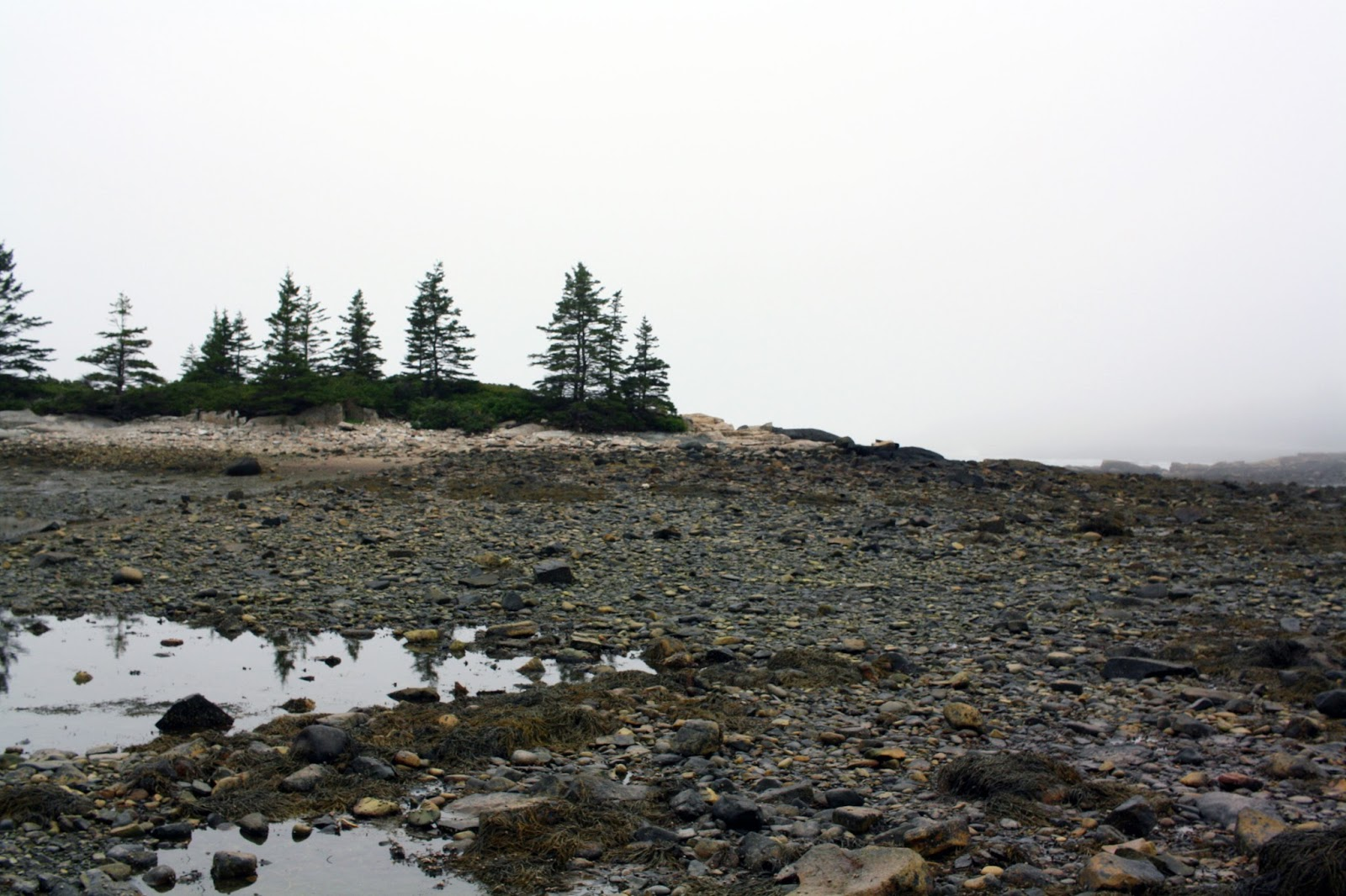 schoodic east pond