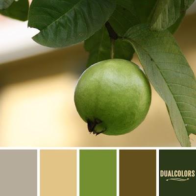 Color Paleta 147