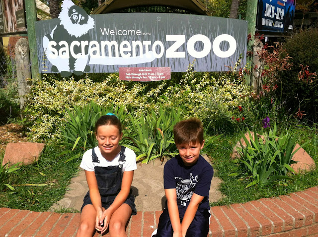 Sacramento Zoo. Great blog about things to do in Northern California.  www.wayupnorthincali.blogspot.com