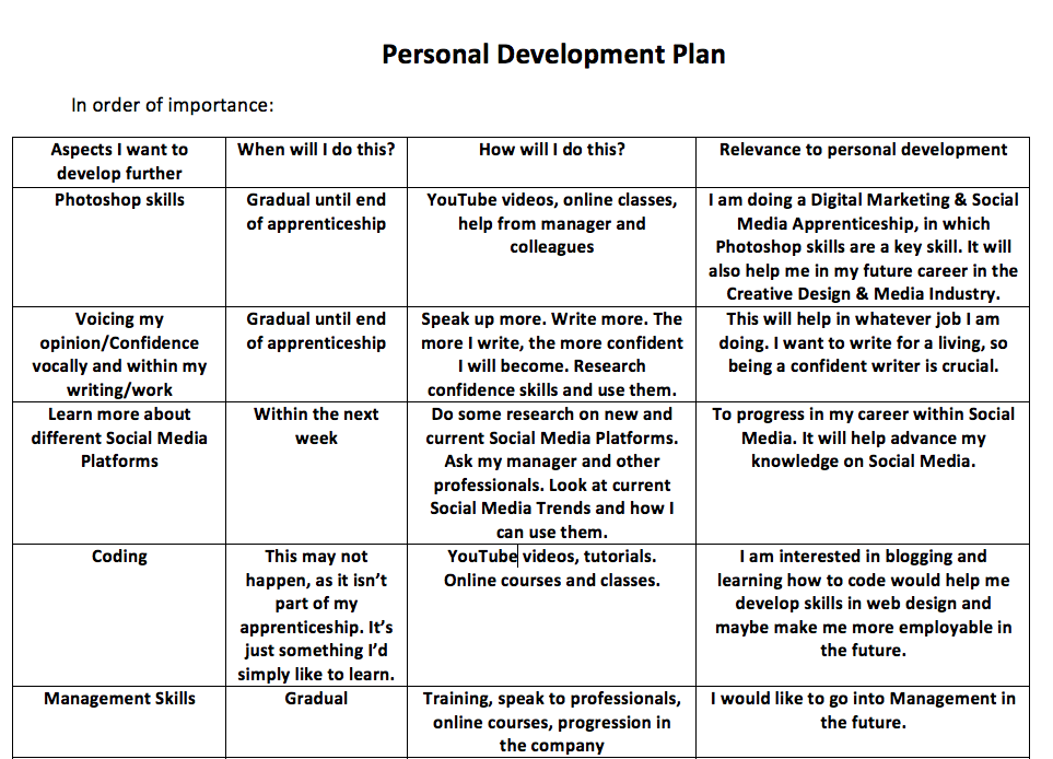 how to write a professional development plan examples