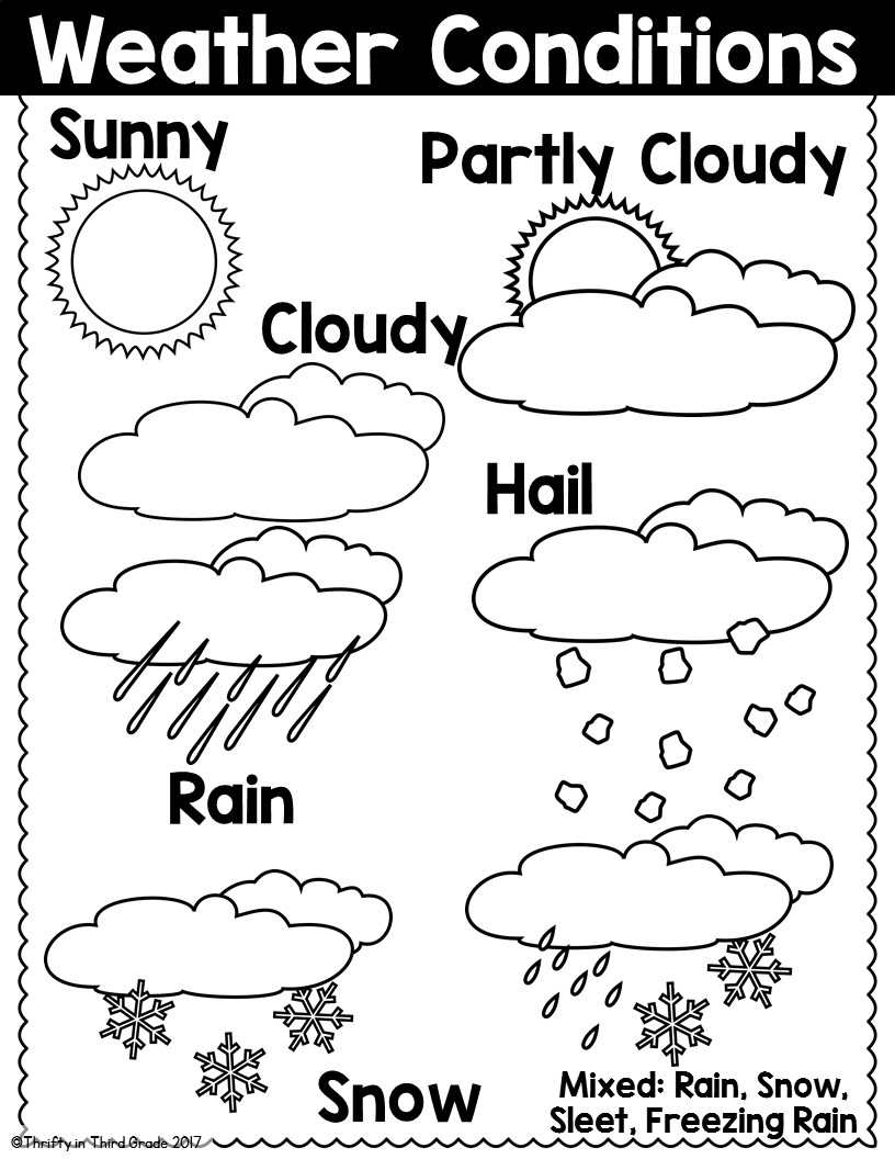 Thrifty in Third Grade: 3rd Grade Weather & Climate