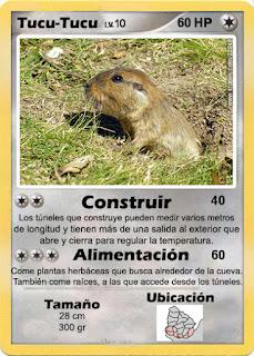 Cartas de Pokemon con Fauna uruguaya (Pradera) - Tucu tucu