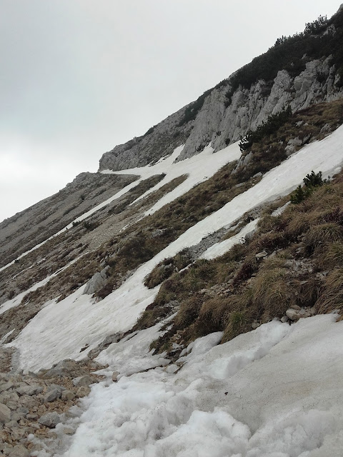 May day with snow on Monte Baldo, close to Rifugio Telegrafo (2147 m altitude)