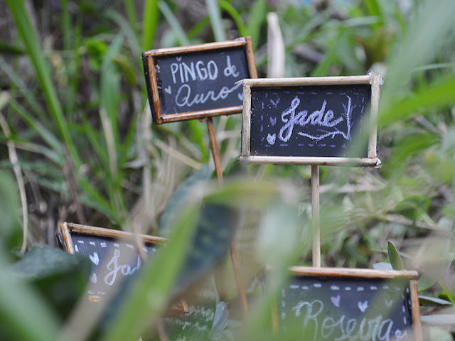 DIY: Plaquinhas para Plantas e Horta Fácil