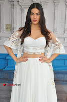 Telugu Actress Amyra Dastur Stills in White Skirt and Blouse at Anandi Indira Production LLP Production no 1 Opening  0082.JPG