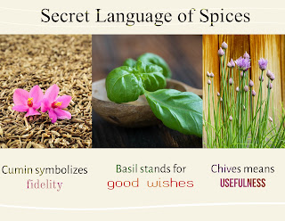 Spice racks are not just jars of spices you add a dash here, spices have a special language all their own.