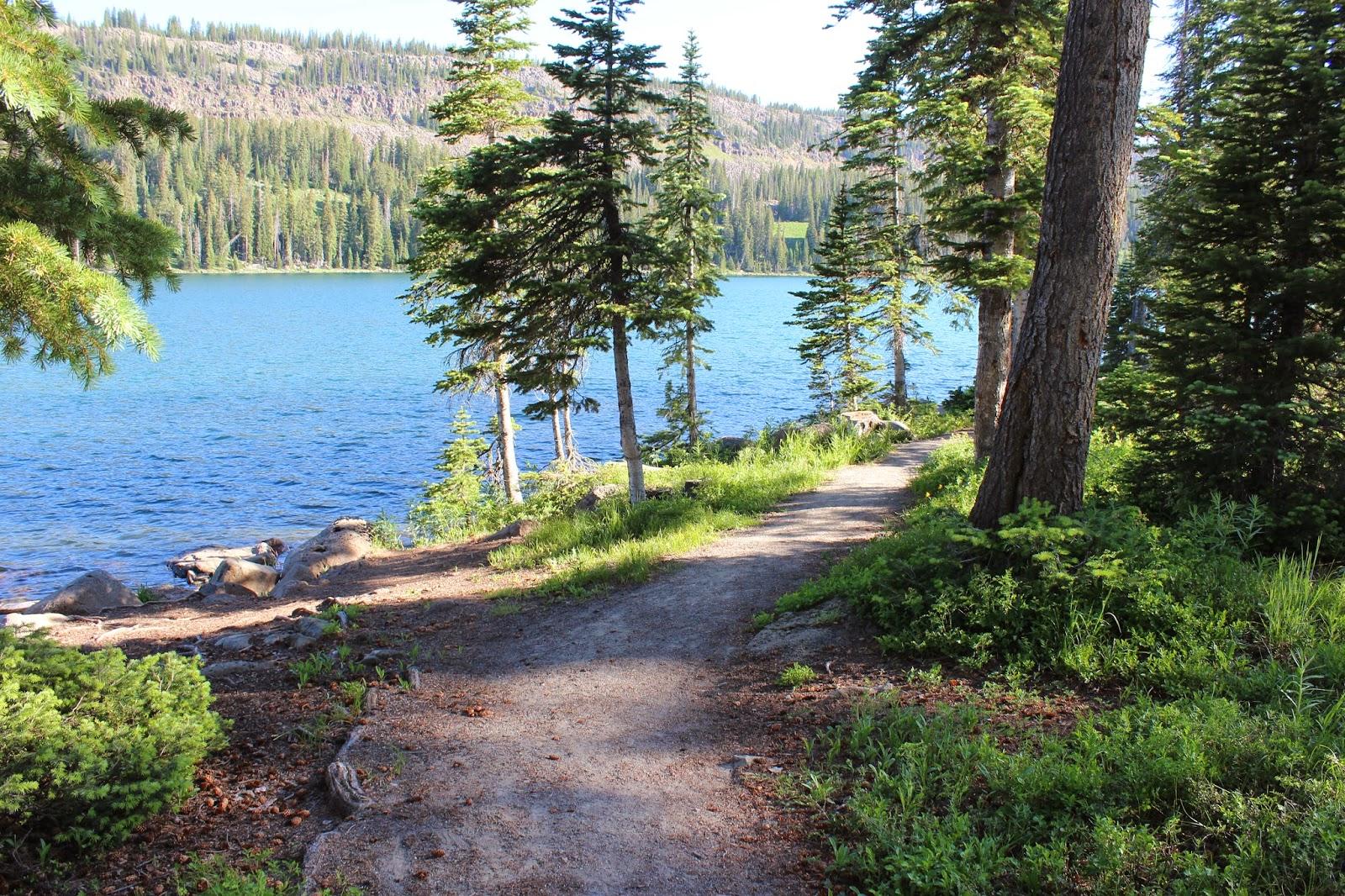Island lake trail for Grand lake colorado fishing