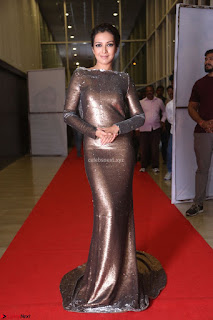 Actress Catherine Tresa in Golden Skin Tight Backless Gown at Gautam Nanda music launchi ~ Exclusive Celebrities Galleries 025.JPG