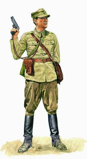 Polish soldier with VIS