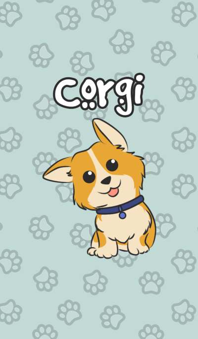 Corgi The Cute dog