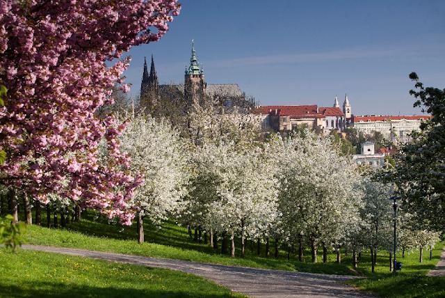 Primavera em Praga