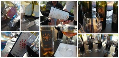 fibbiano wines