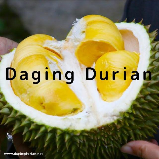 pabrik-daging-durian-medan-harum-di-aceh-tengah