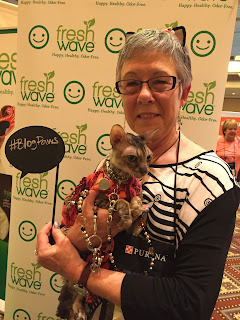 Coco, the Cornish Rex, stopped at the Fresh Wave booth at BlogPaws