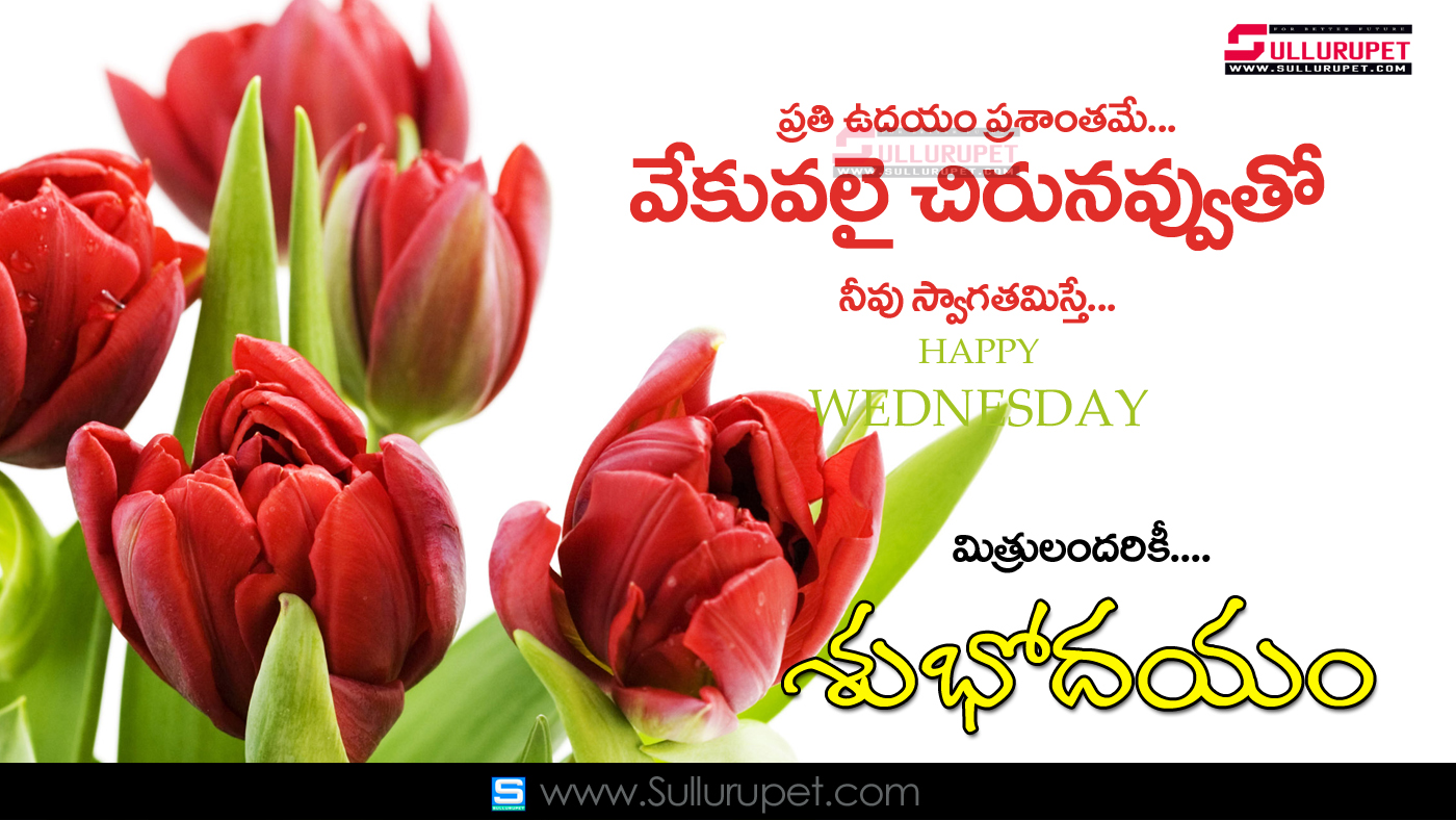 15 Good Morning Quotes In Telugu Images Top Colection For Greeting