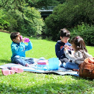 Muslim Homeschool Favourites Nature Walks